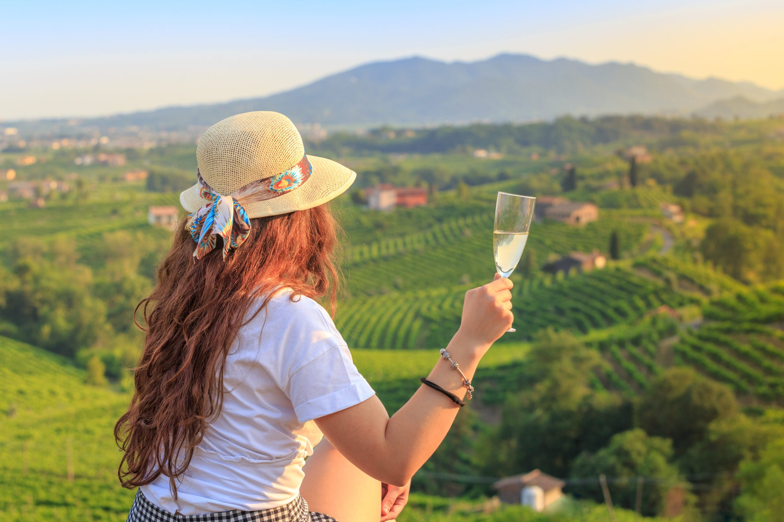 Prosecco Tasting Tour From Venice