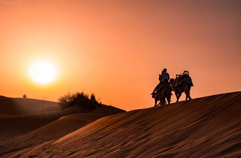 Red Dune Safari, Sandboarding, Camel Ride & Bbq Experience From Dubai