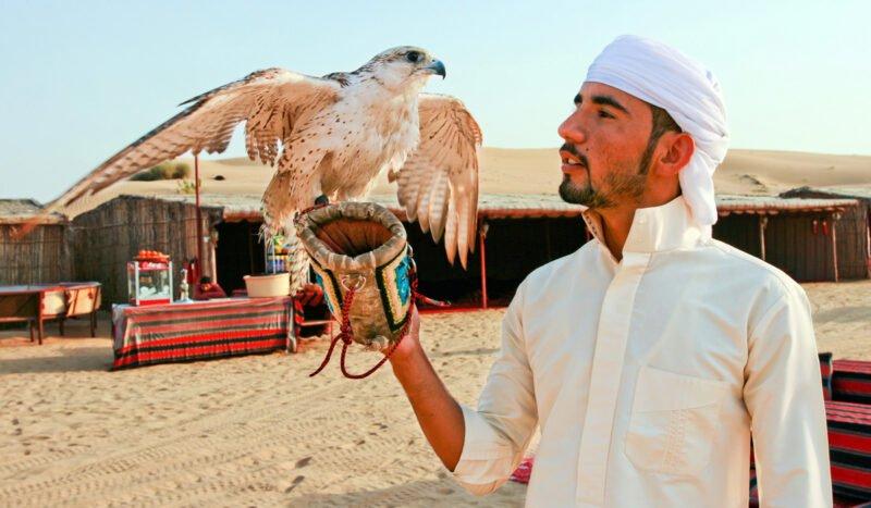 Red Dune Safari, Sandboarding, Camel Ride & Bbq Experience From Dubai_101_7