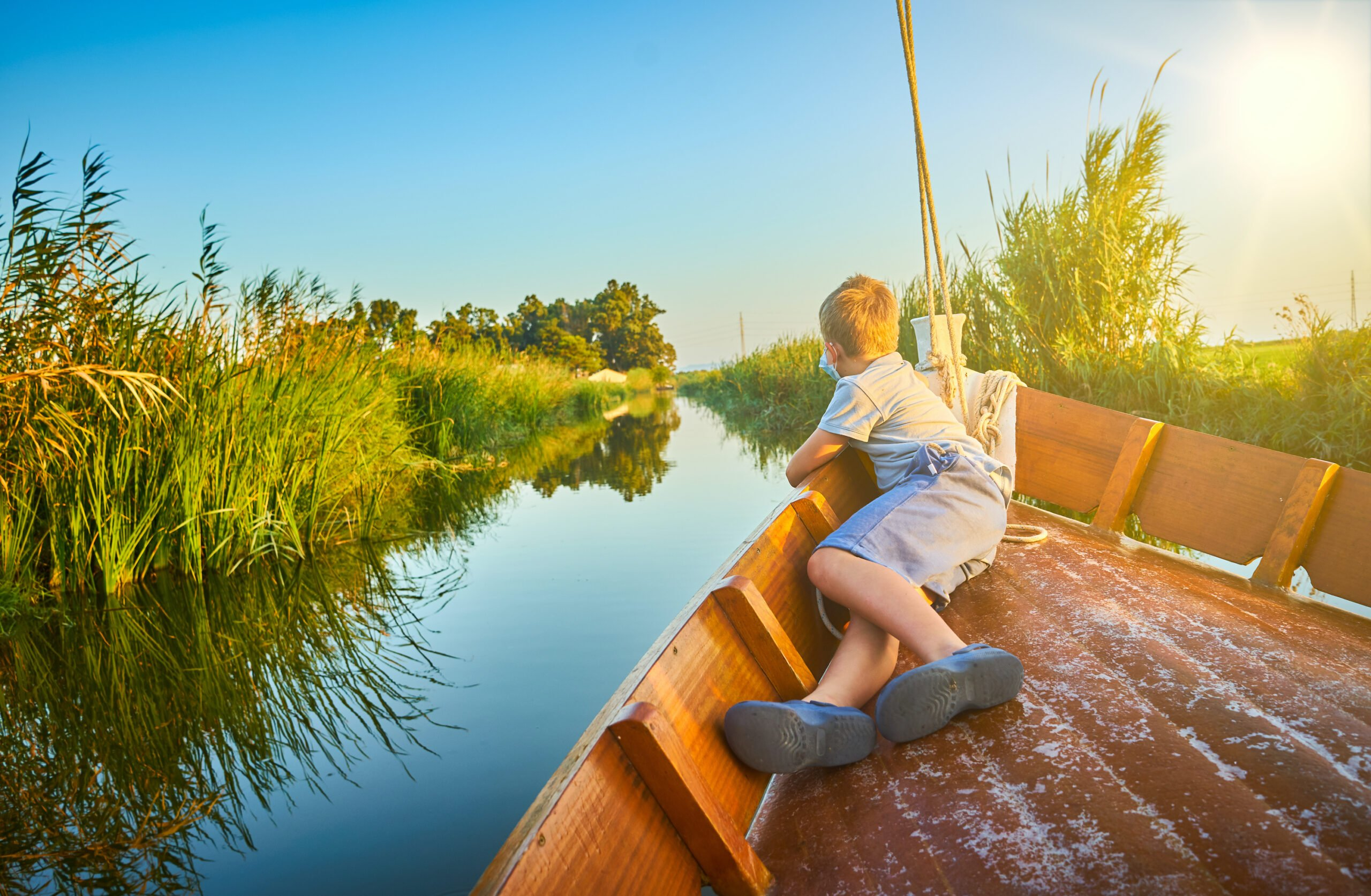 Discover Many Migratory Birds In Our Lake Albufera Tour From Valencia