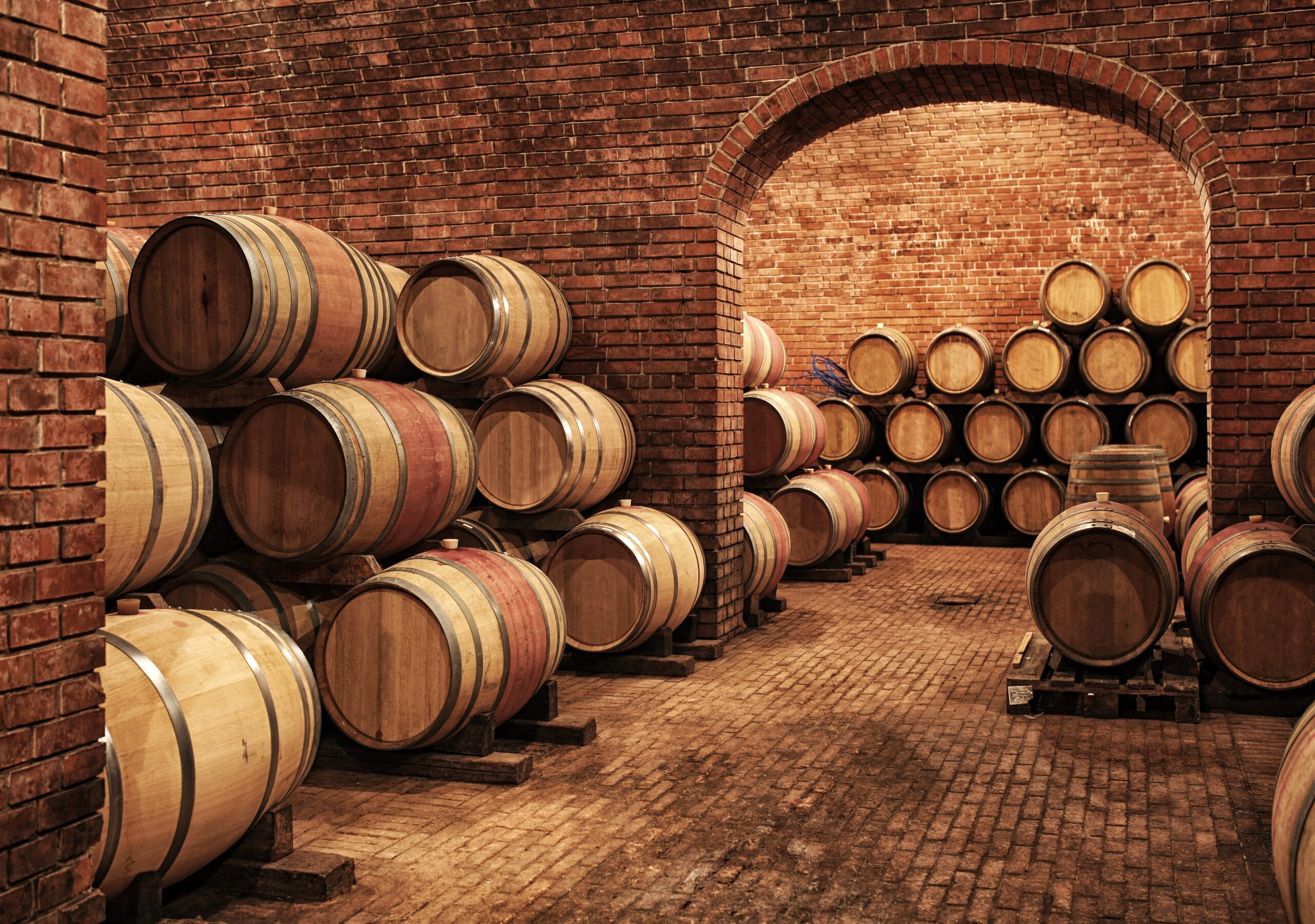 Visit Valencia Best Wineries In Our Wine Tasting Experience In Valencia Old Town