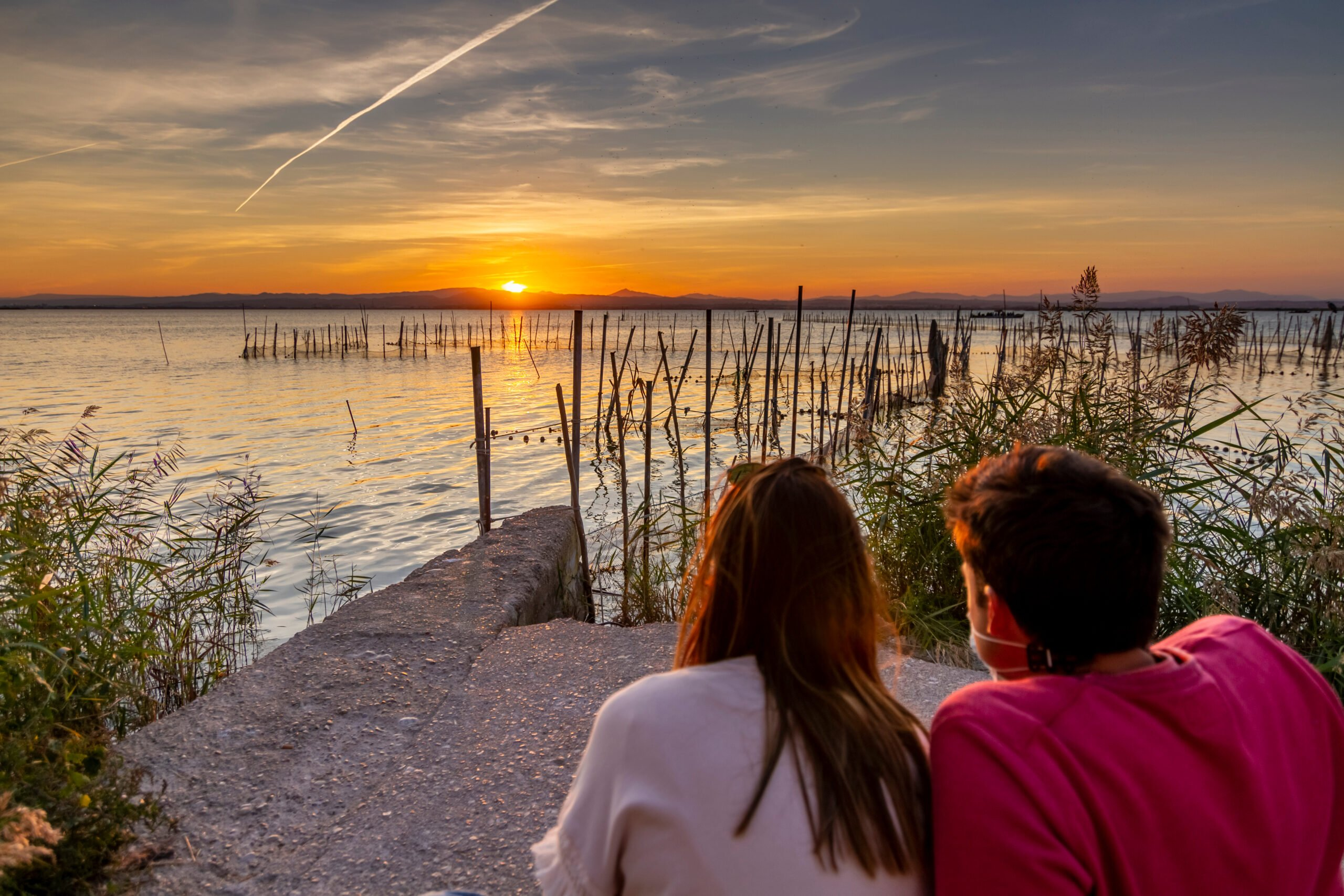 Walk Through The Forest And Dunes In Our Lake Albufera Tour From Valencia