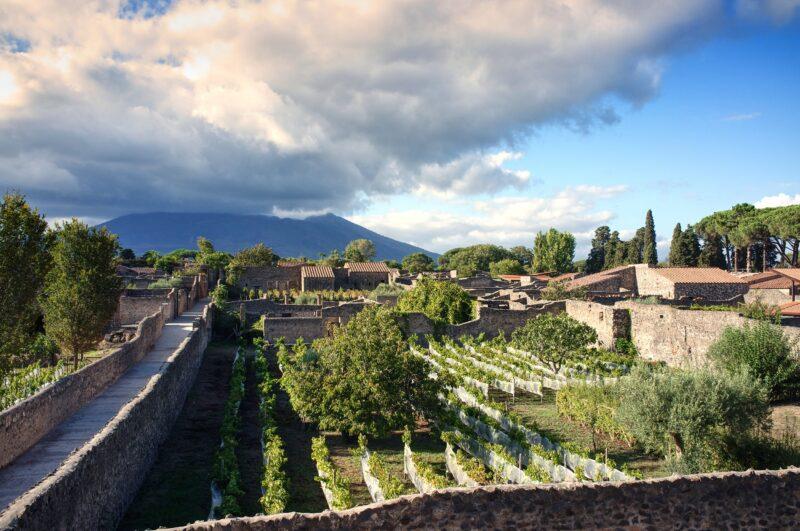 Ancient Pompeii & 2 Vesuvian Wineries Tour From Pompeii_5