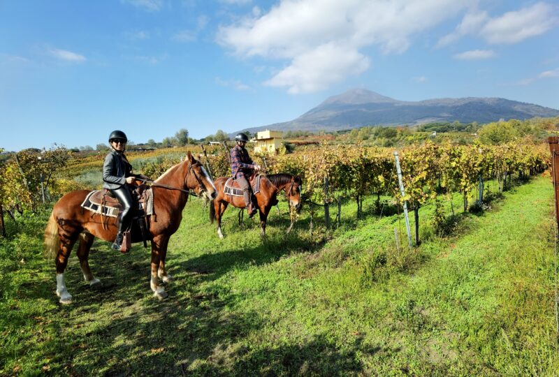 Ancient Pompeii And Horseback Riding On Mount Vesuvius From Pompeii_114_11