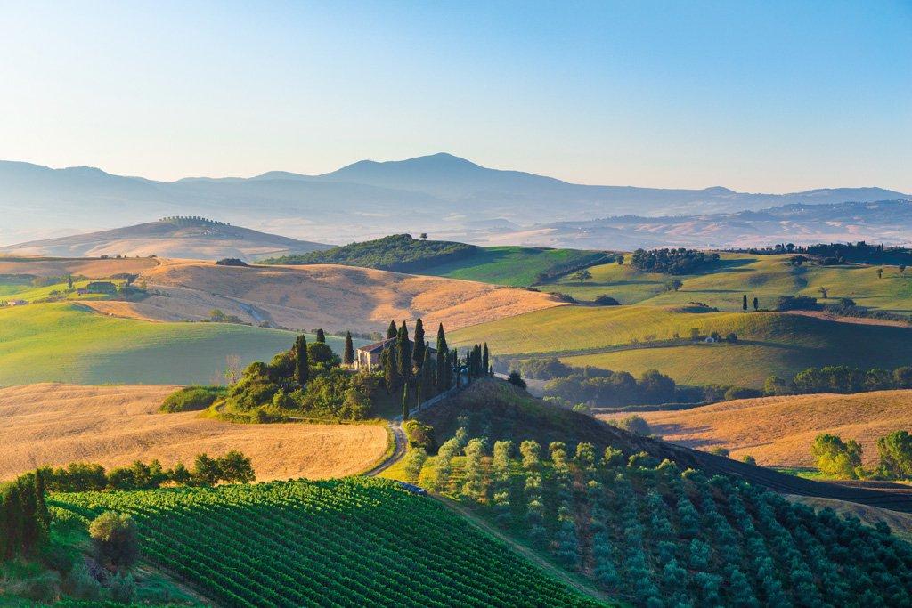 Brunello Wine Tasting Tour From Siena_109-3