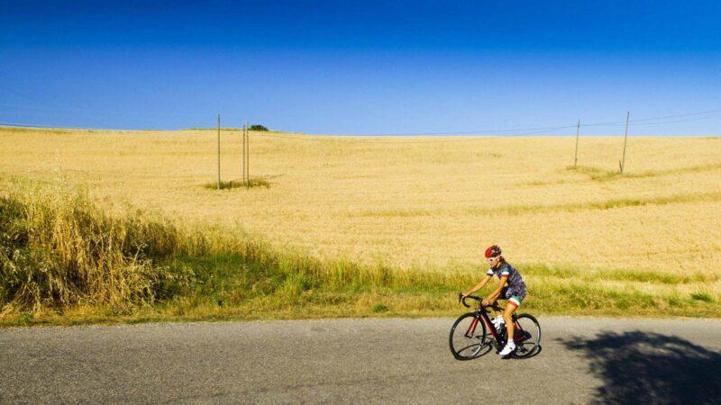 Chianti E-bike Tour From Florence_109_3