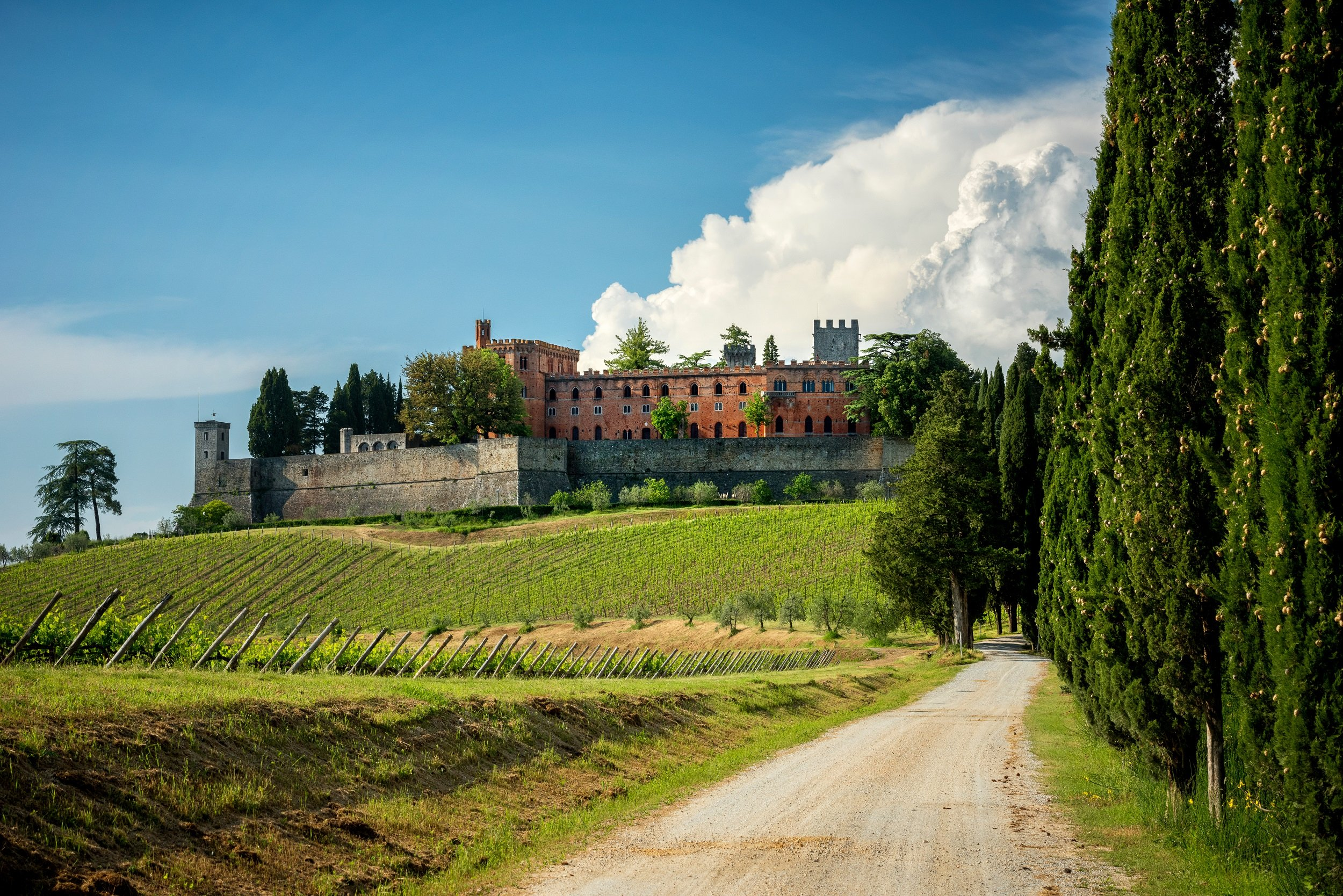 Chianti E-bike Tour From Siena