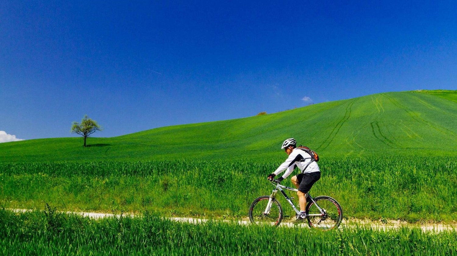 Chianti E-bike Tour From Siena_109_3