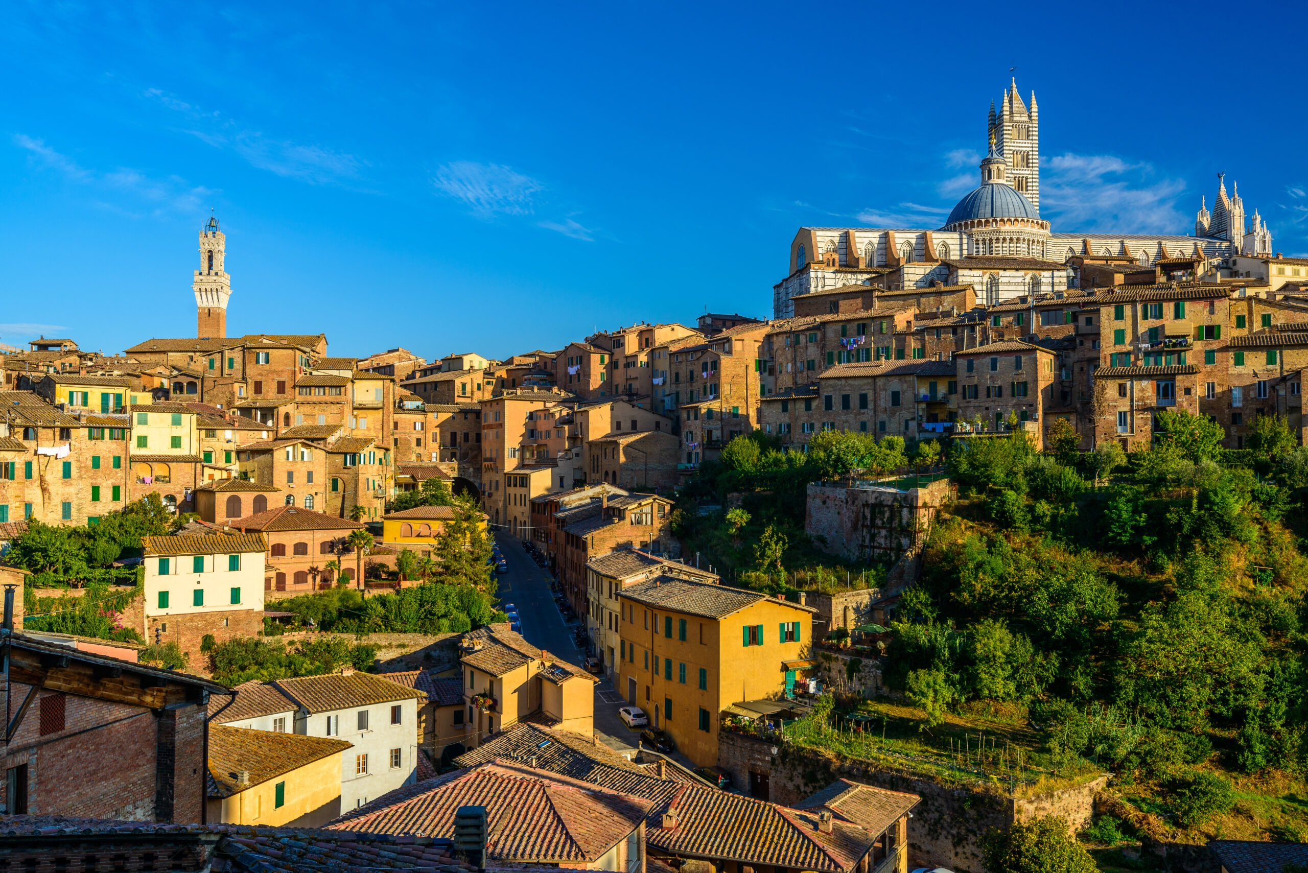 Insider Siena City Tour_4