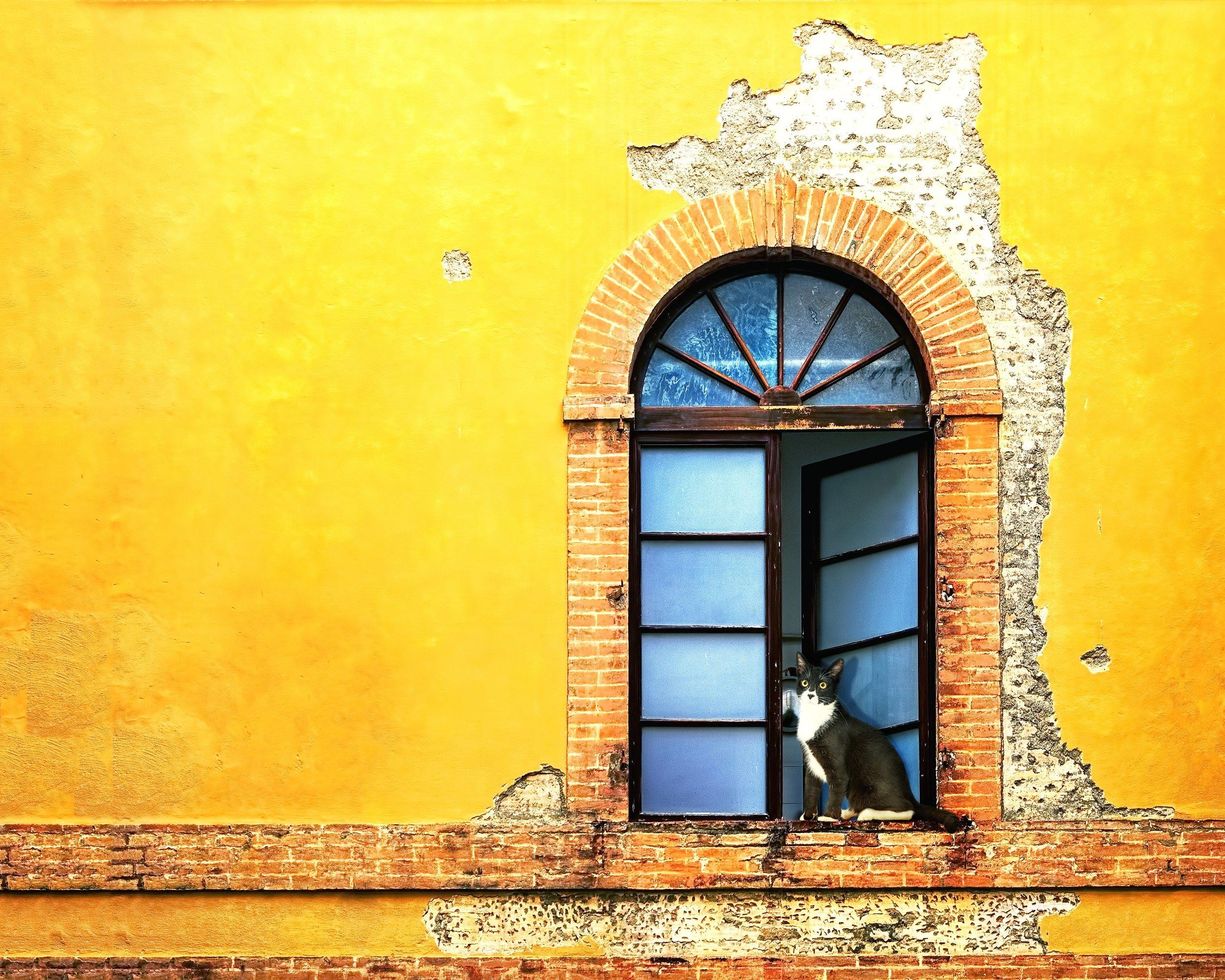 Insider Siena City Tour_5