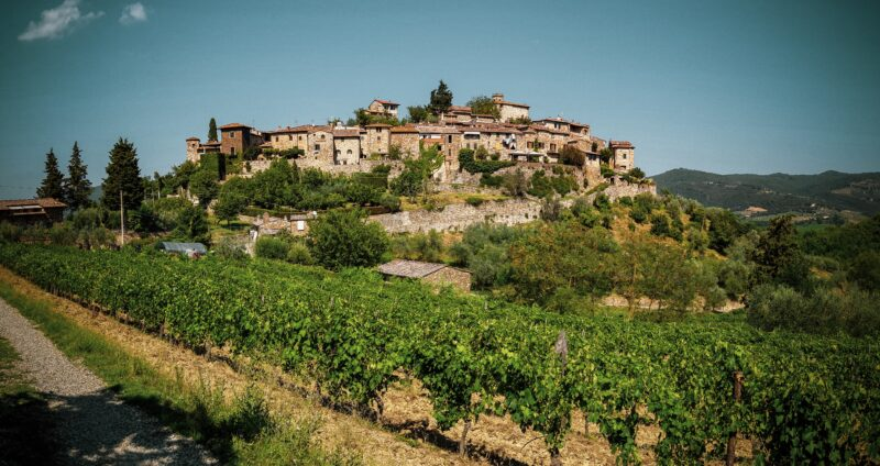 Wine Travel In Italy: An Insider Guide