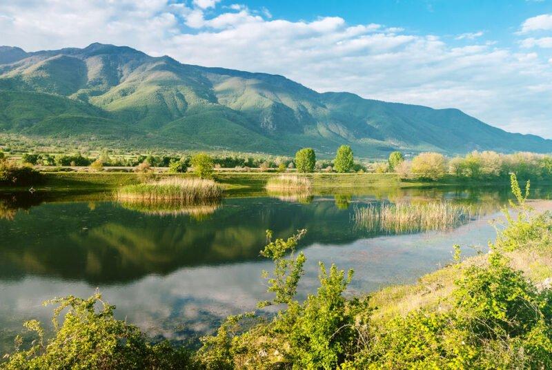 Kerkini Lake-ecotour From Thessaloniki_116_3