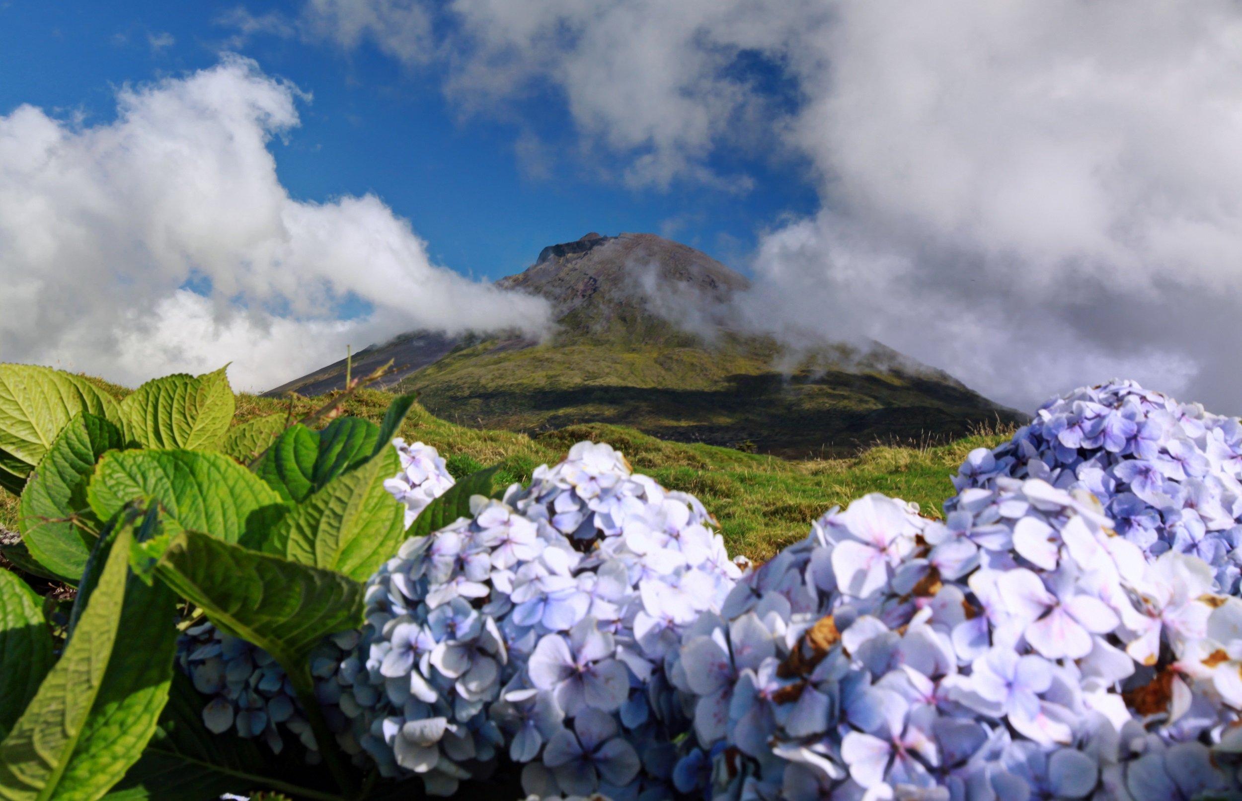 Pico Island Tour From Madalena_2