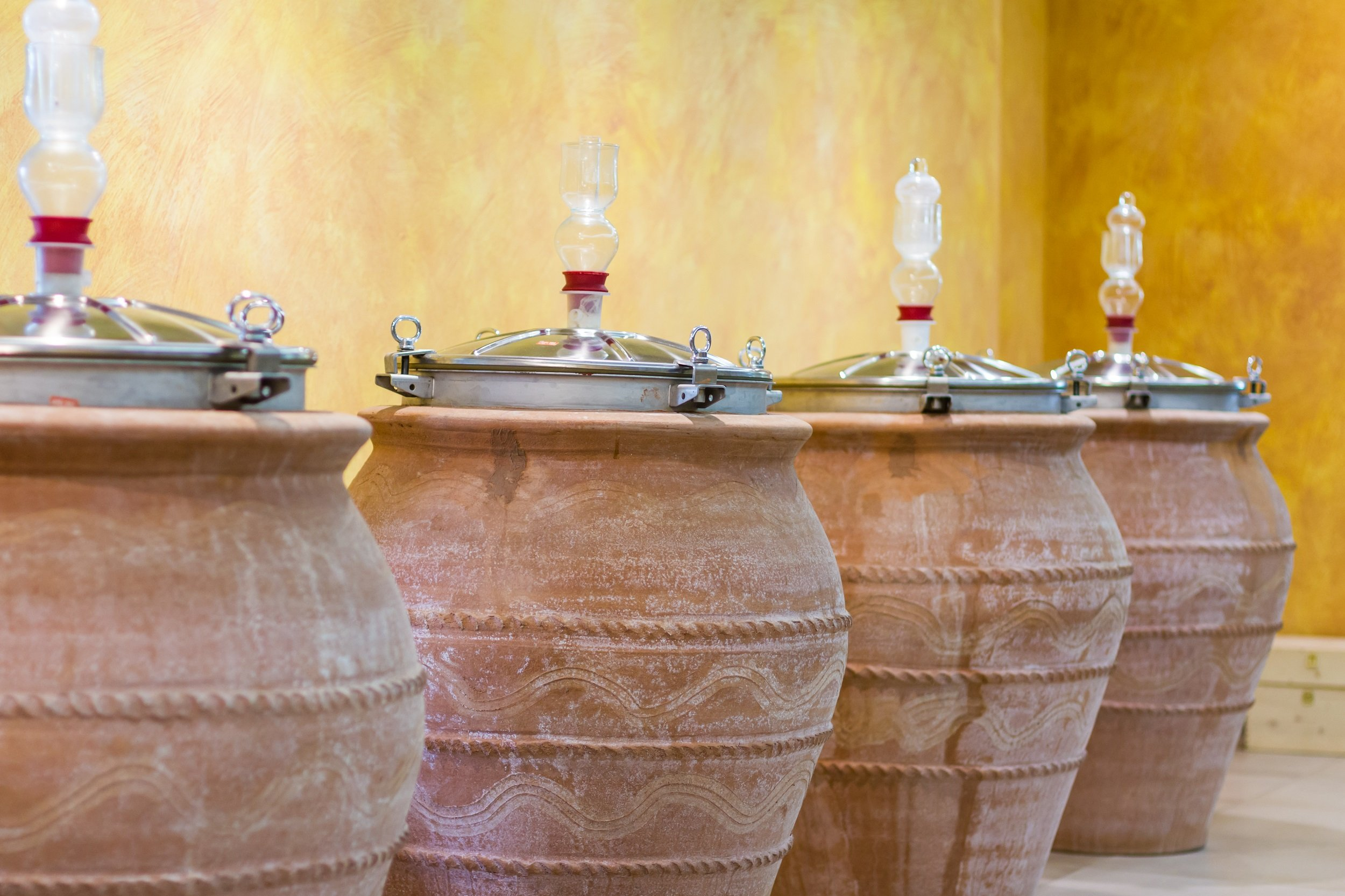 Pompeii Tour, Lunch & Wine Tasting Experience From Pompeii_110_1