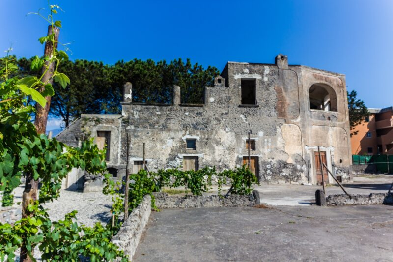 Pompeii Tour, Lunch & Wine Tasting Experience From Pompeii_110_6