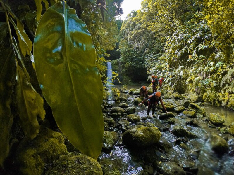 Ribeira Da Salga Canyoning Tour From Ponta Delgada_108._4