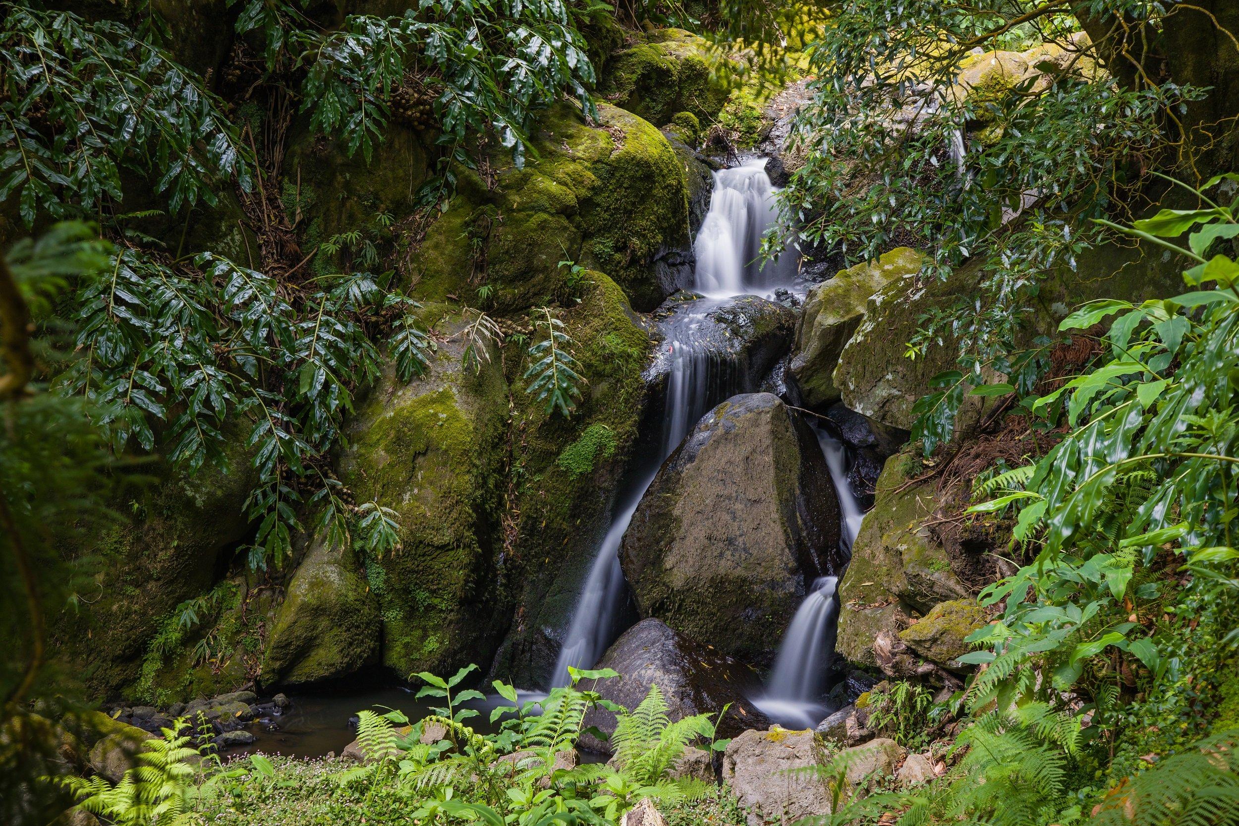 Salto Do Prego - Sanguinho Hiking Tour From Ponta Delgada_3