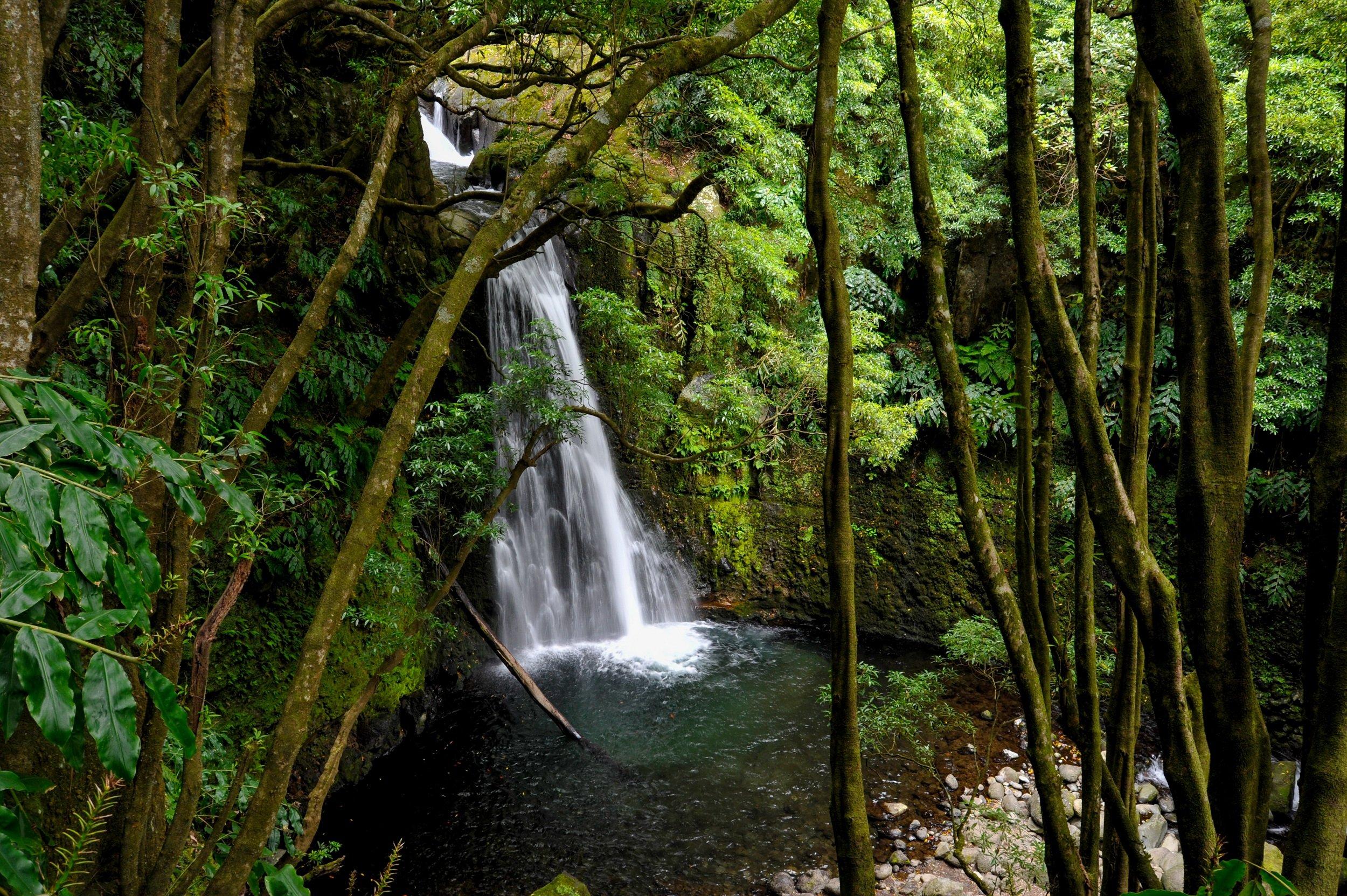 Salto Do Prego - Sanguinho Hiking Tour From Ponta Delgada_1