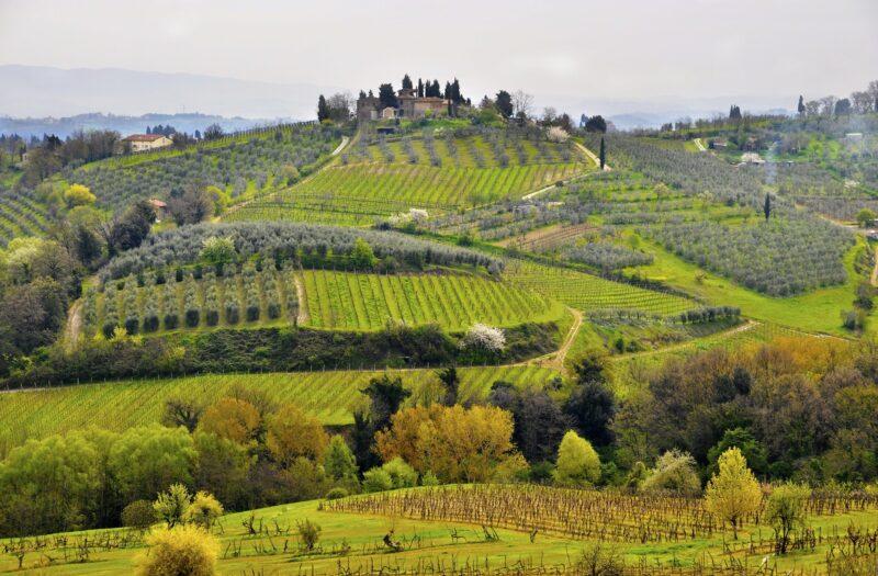San Gimignano, Chianti, Siena & Monteriggioni Tour _109_1