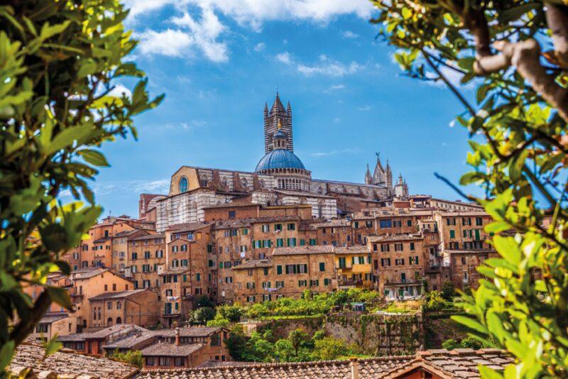 San Gimignano, Chianti, Siena & Monteriggioni Tour _109_4