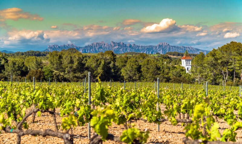 Sitges, Tapas & Wine Tasting Tour From Barcelona_10