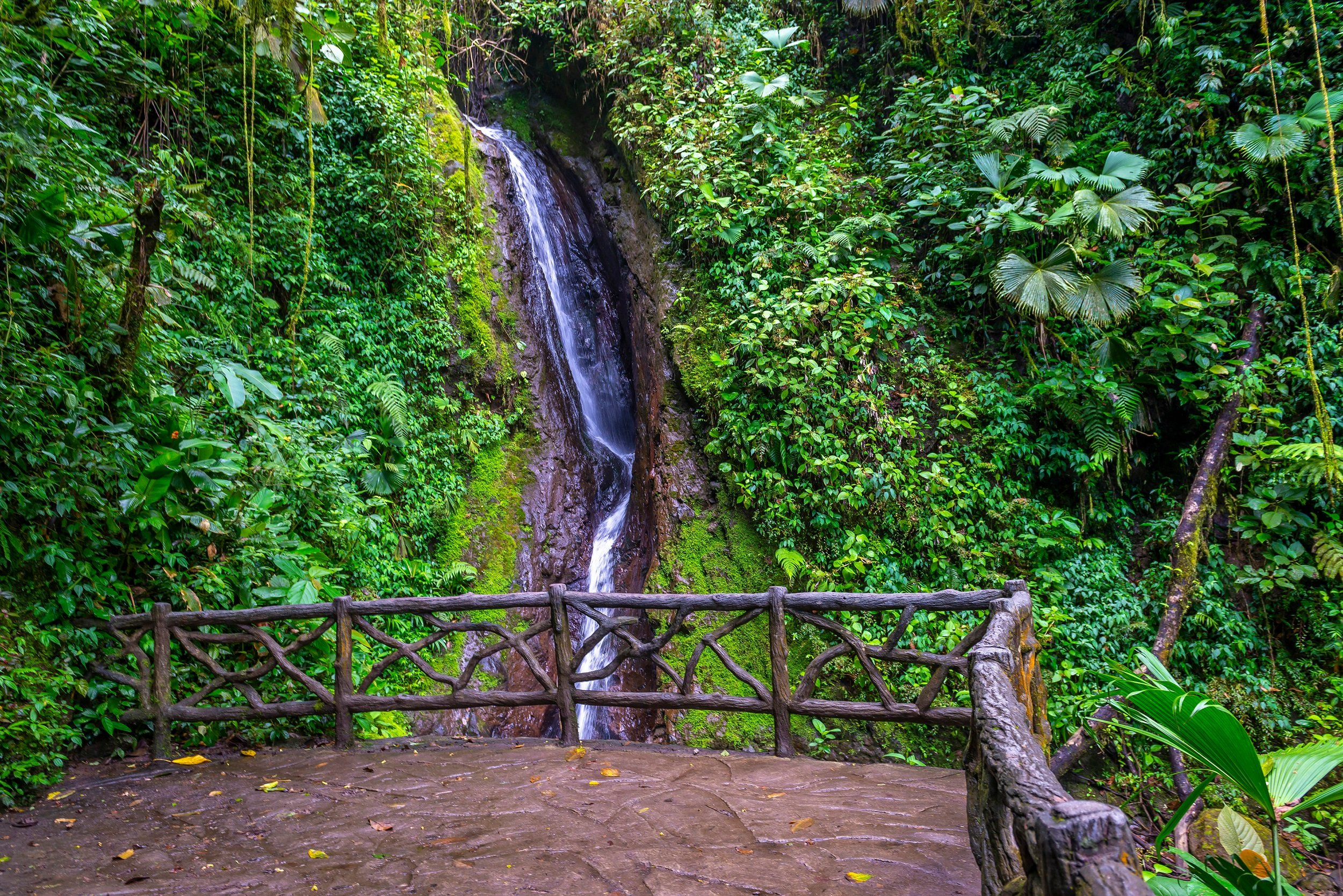 Arenal Hanging Bridges Tour From La Fortuna & Arenal