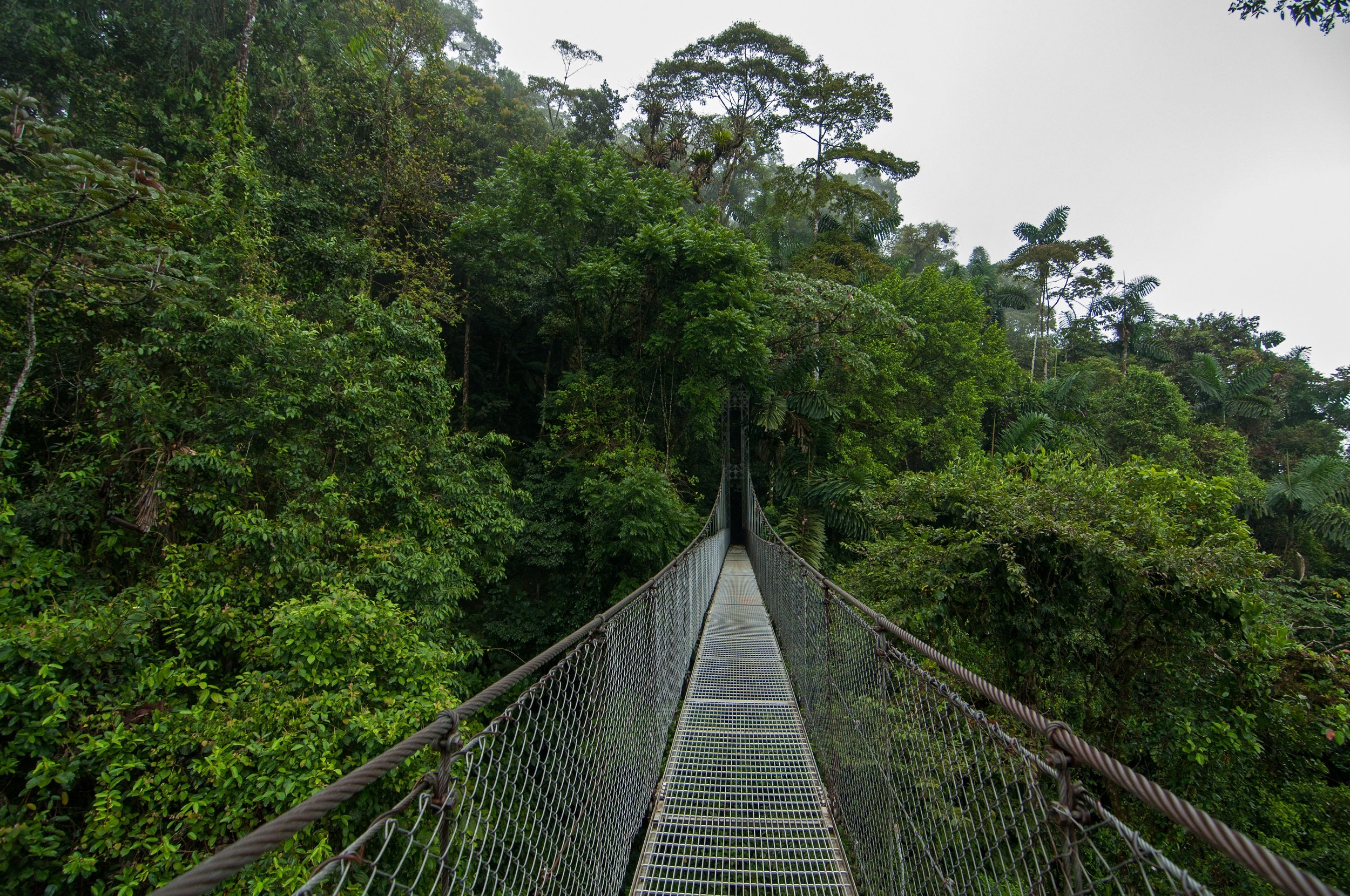 Arenal-hanging-bridges-and-chocolate-tasting-tour-from-la-fortuna-arenal