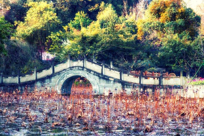 Chengdu Culture Day Tour12