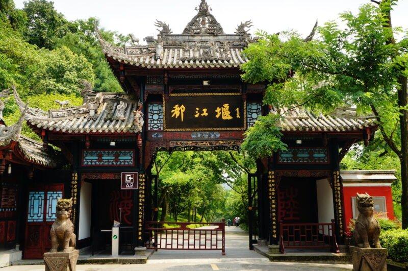 Chengdu Panda Base & Mount Qingcheng Tour 6