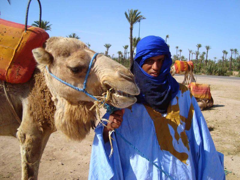 Desert & Palm Grove Quad Biking Private Tour From Marrakesh_119