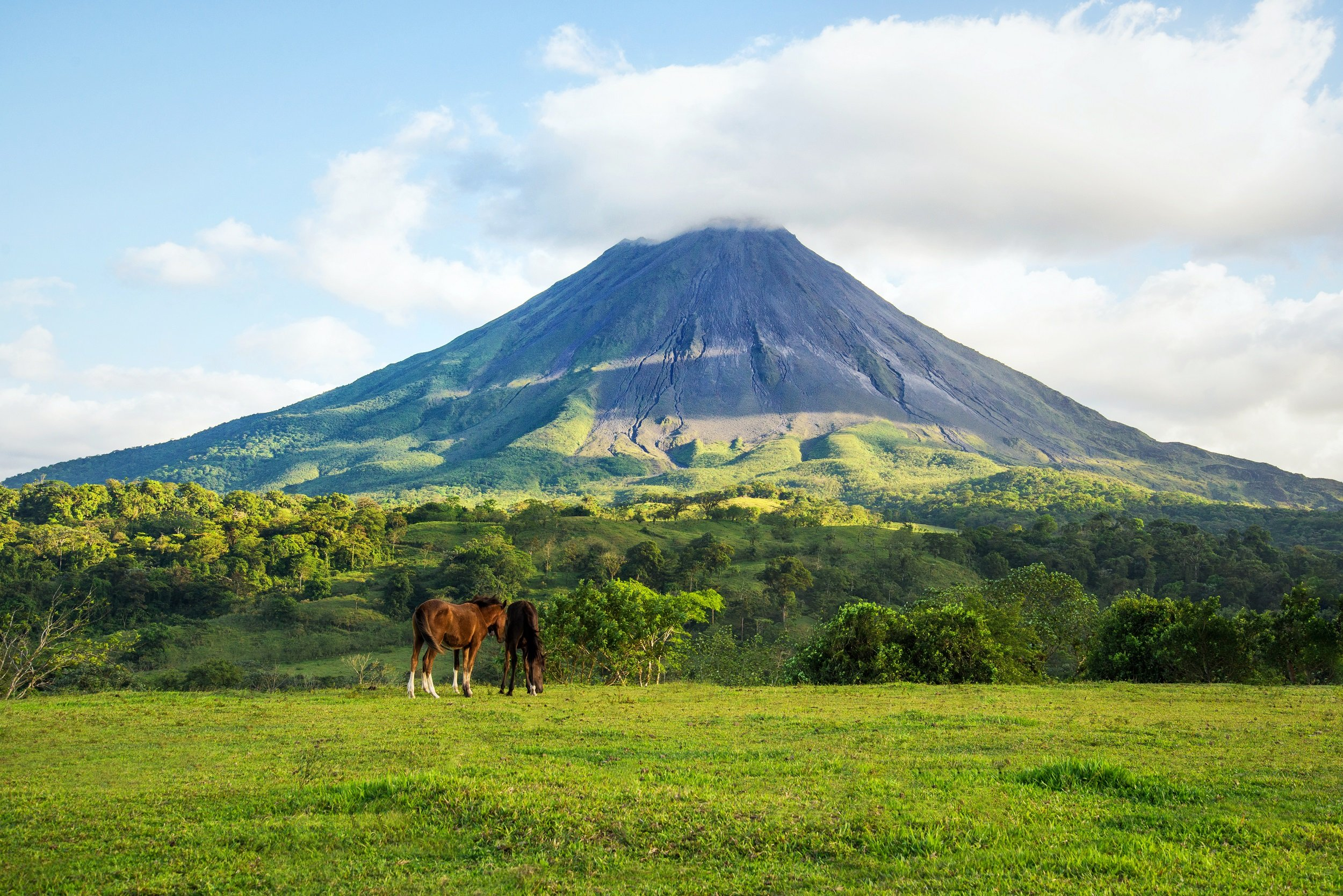 Horseback Riding In Arenal From La Fortuna & Arenal