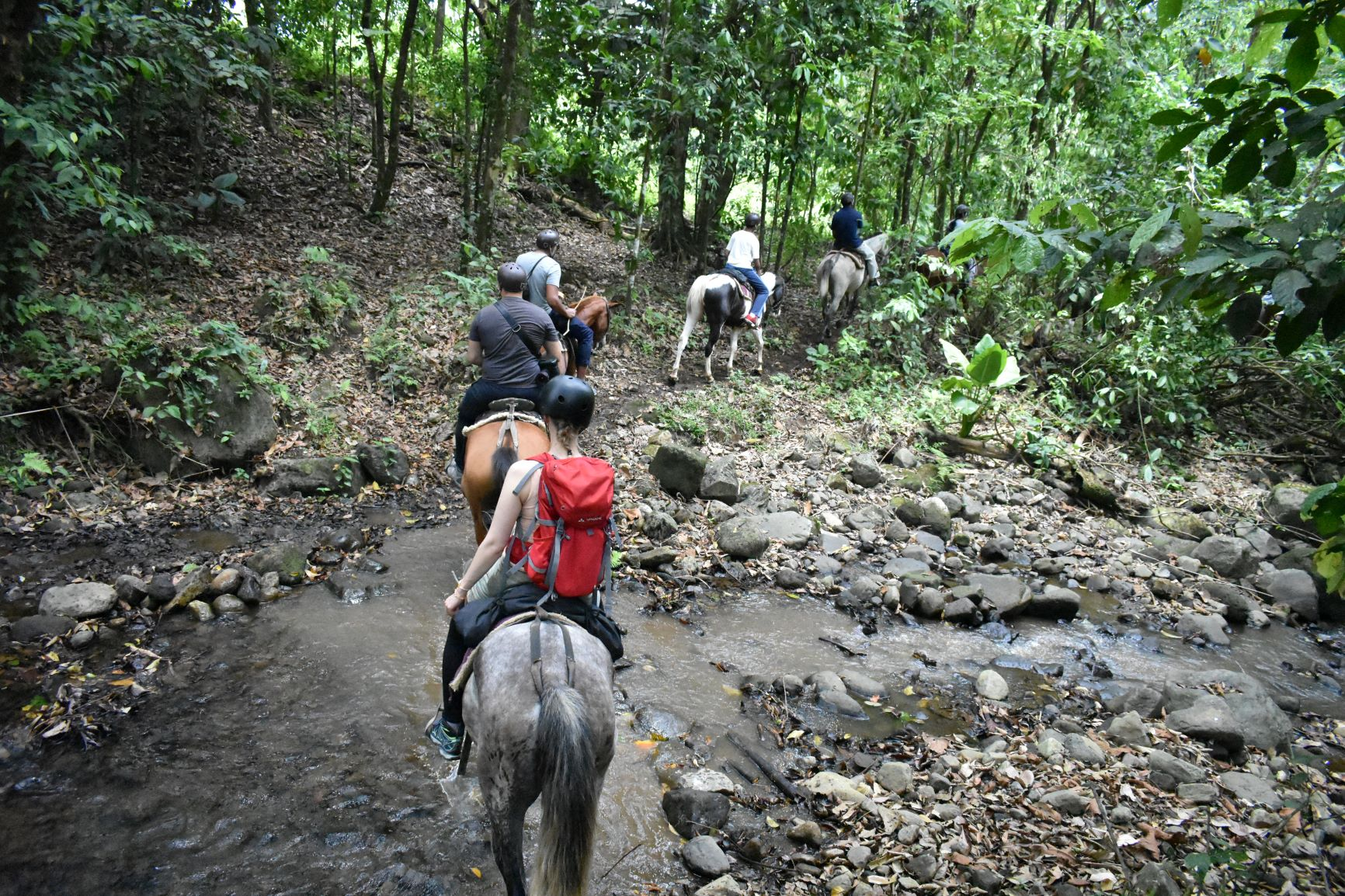 Horseback Riding In Arenal From La Fortuna & Arenal_118_4