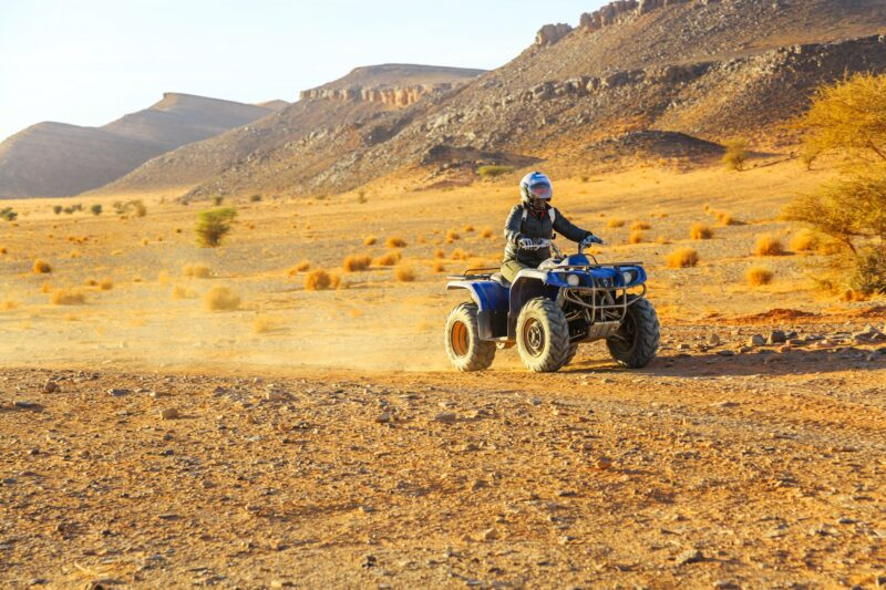 Join The Desert Palm Grove Quad Biking Tour From Marrakesh