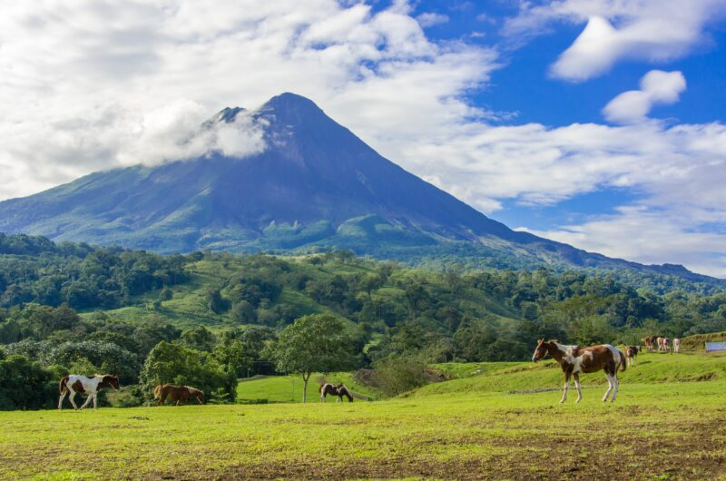 Join The Horseback Riding In Arenal From La Fortuna & Arenal_
