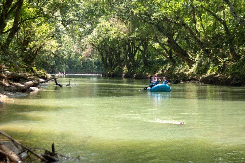 Peñas Blancas River Safari And La Fortuna Waterfall Tour From La Fortuna & Arenal_118_4