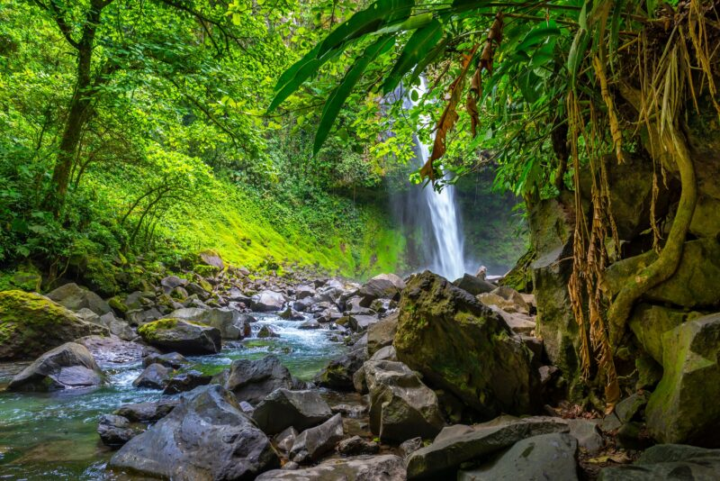 Join The Arenal Hanging Bridges, La Fortuna Waterfall And Chocolate Tasting Tour From La Fortuna & Arenal