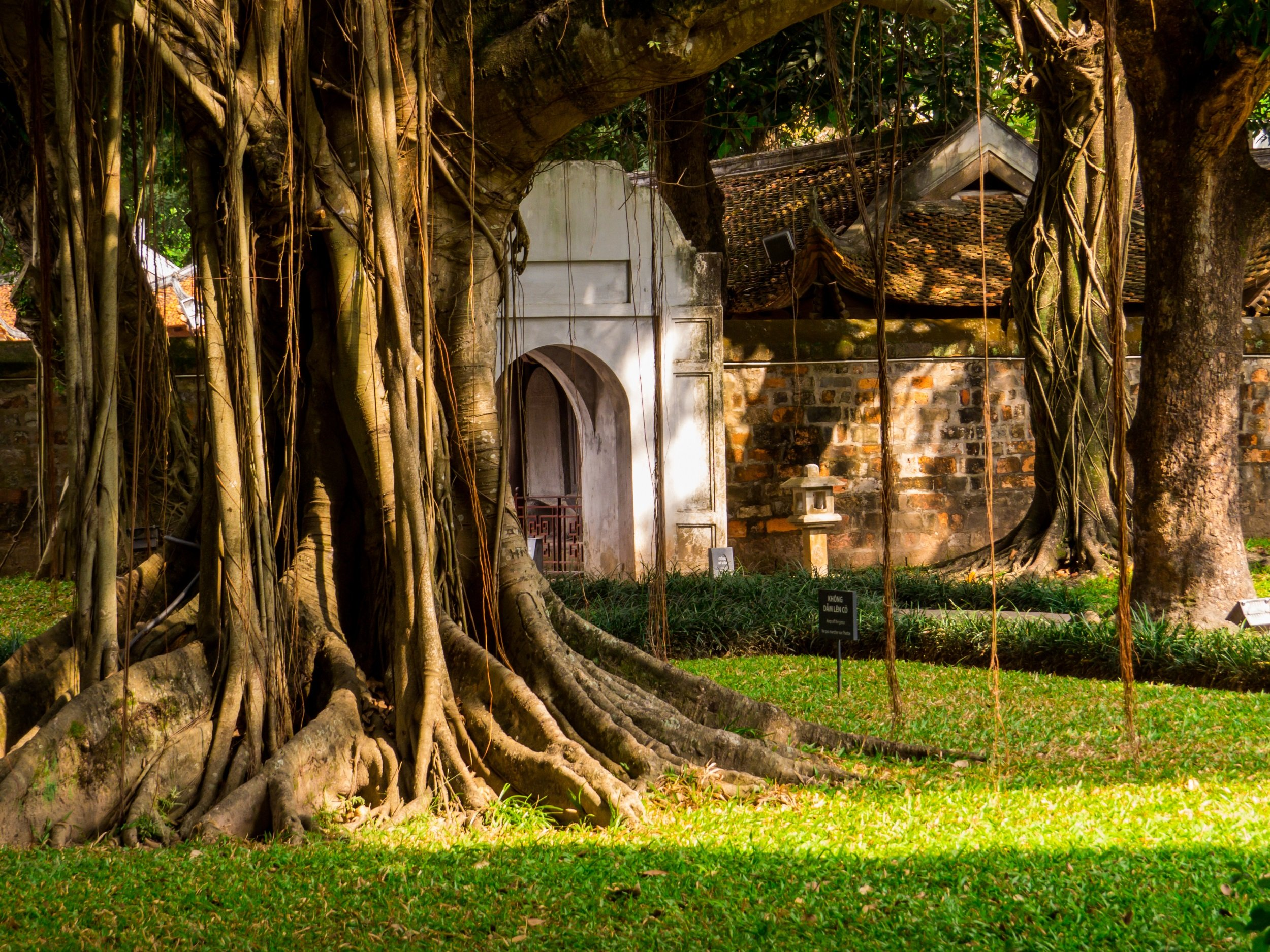Best Of Hanoi And Nin Binh 5 Day Tour Package