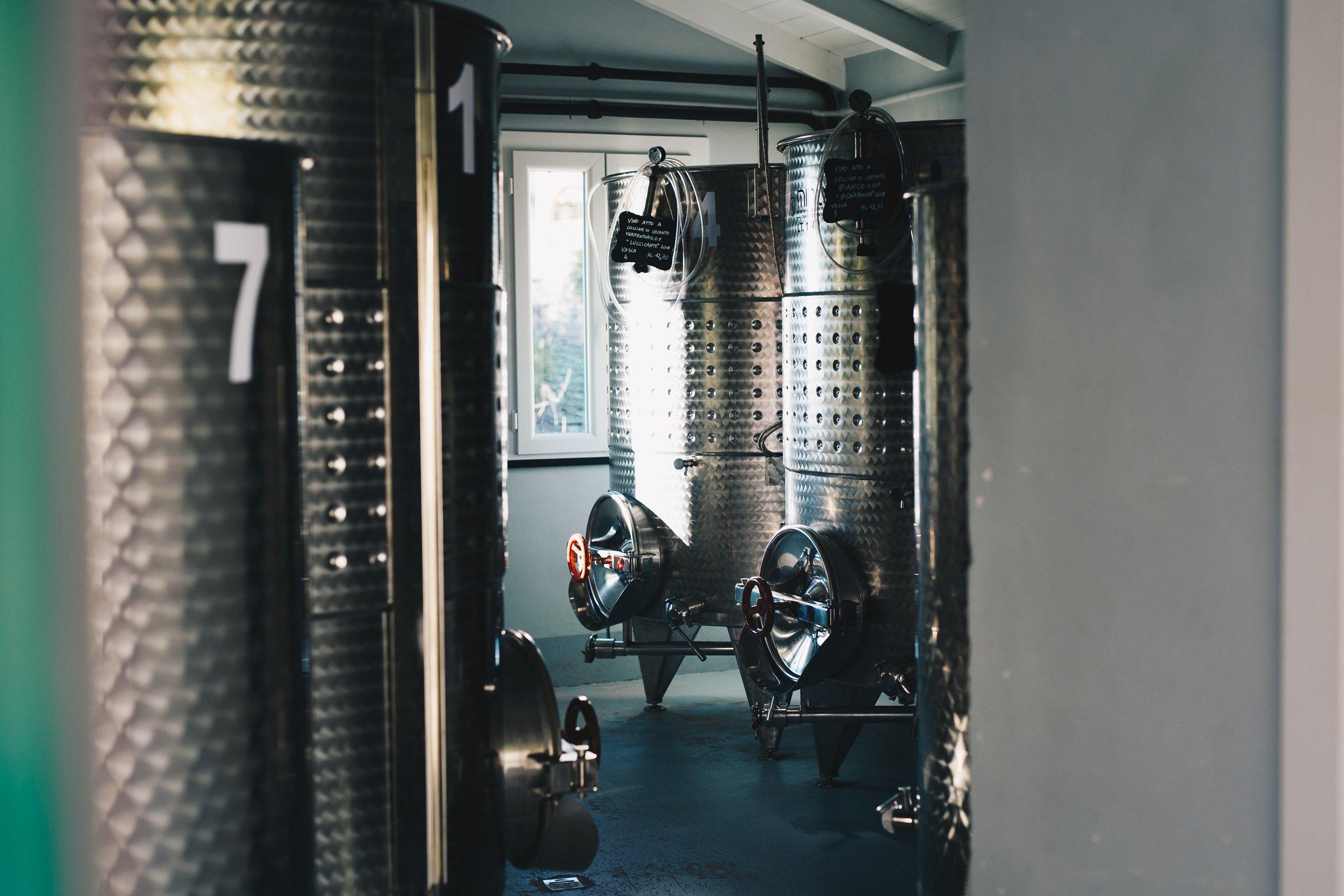 Bonassola Organic Wine Tasting Experience_3