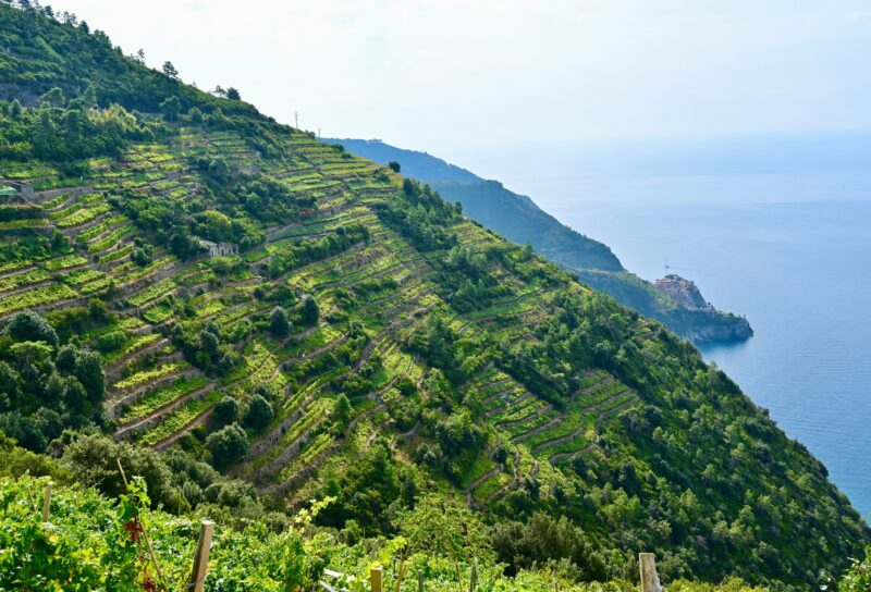 Cinque Terre Hiking Tour From Manarola_2