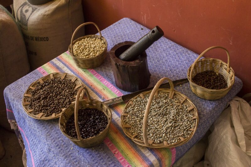 Huatulco Culture & Coffee Tour_54_5