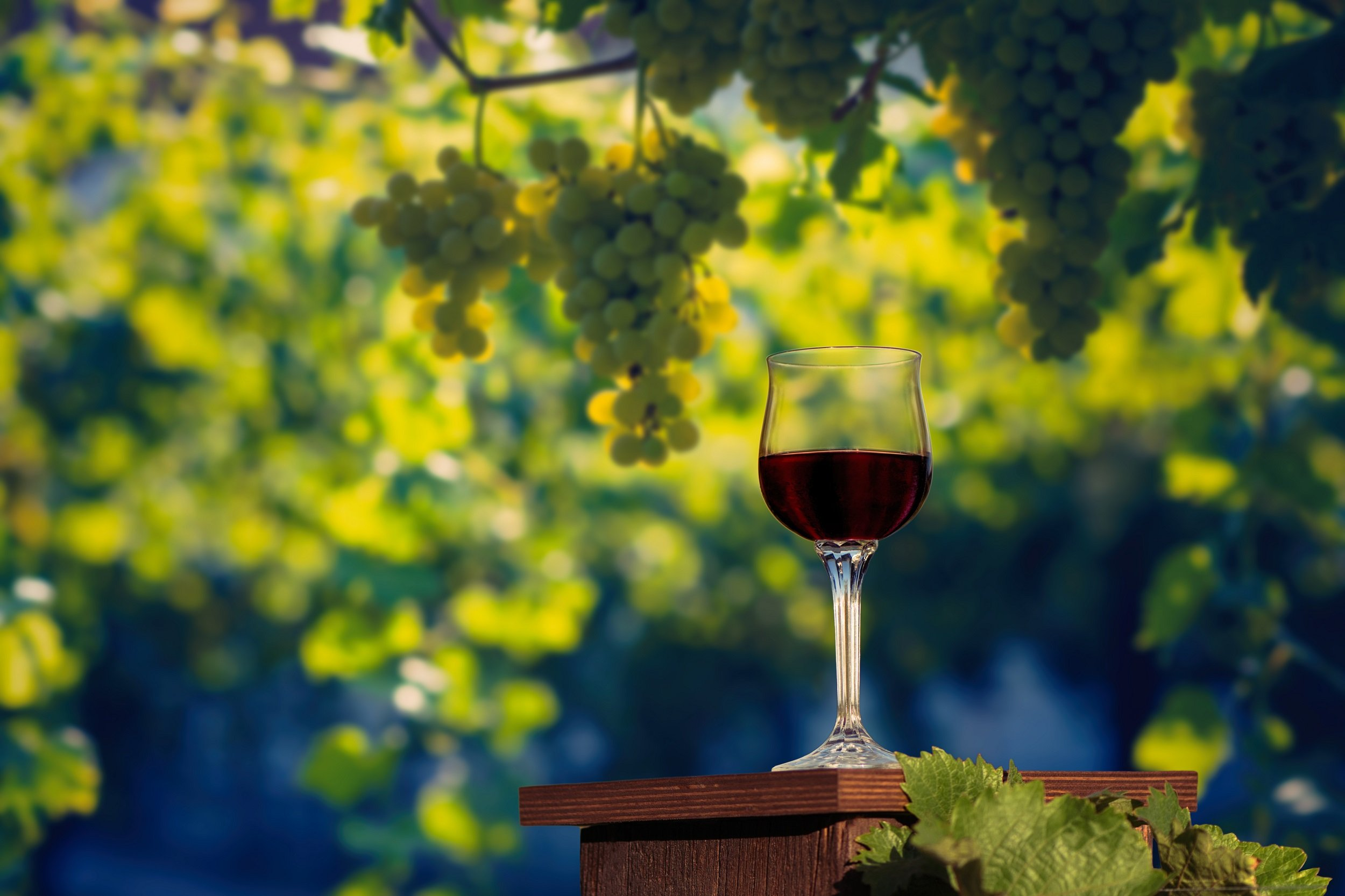 Visit A Local Winery On Our Siena 5 Day City Break Tour Package