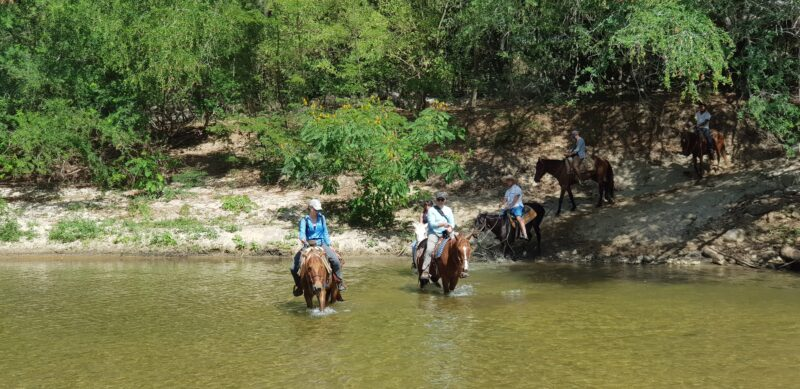 Join The Horseback Riding Adventure & Hot Springs Tour From Puerto Escondido_121