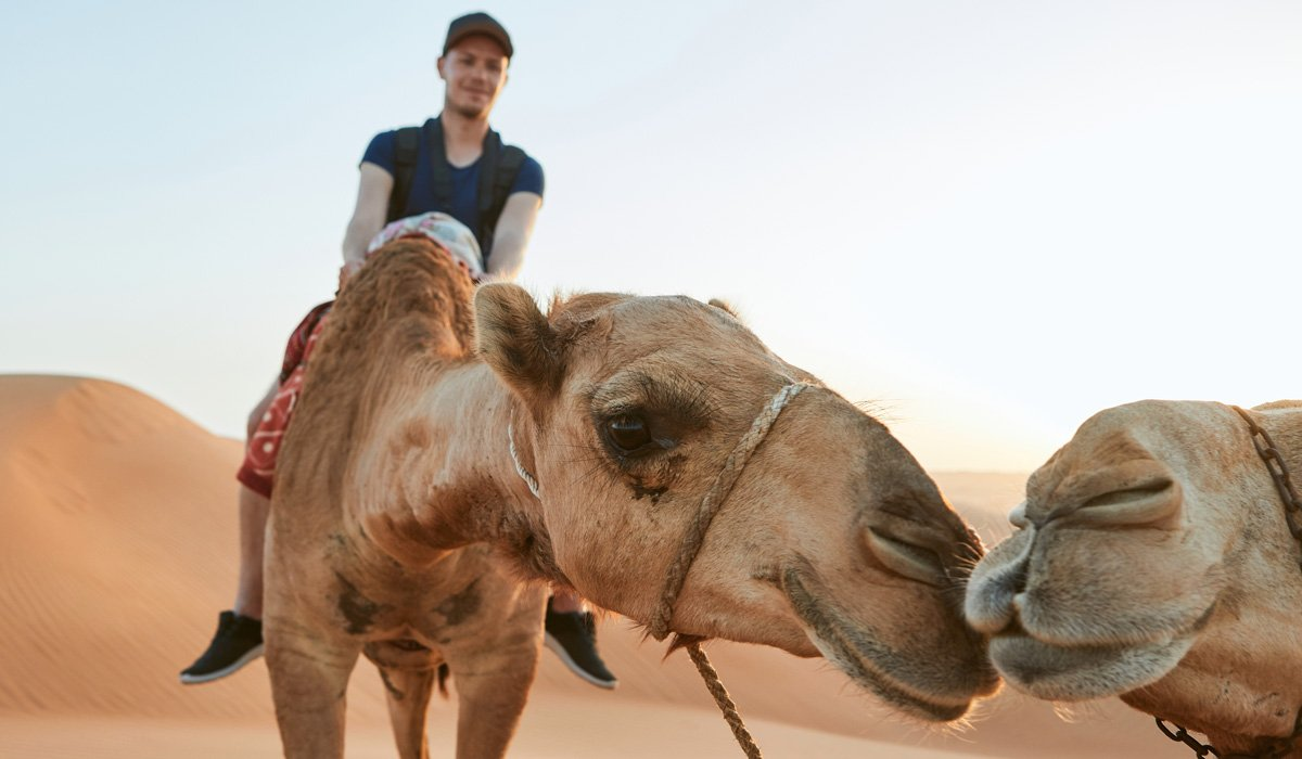 Lahab Desert Safari, Camel Ride, Quad Experience & Private Beach Access At Palm Jumeirah From Dubai_101_3