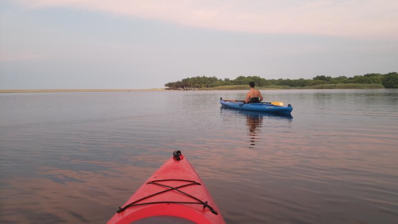 Mangrove Kayak Experience From Puerto Escondido_121