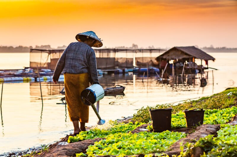Best Of Ho Chi Minh City & Mekong Delta 5 Day Tour Package