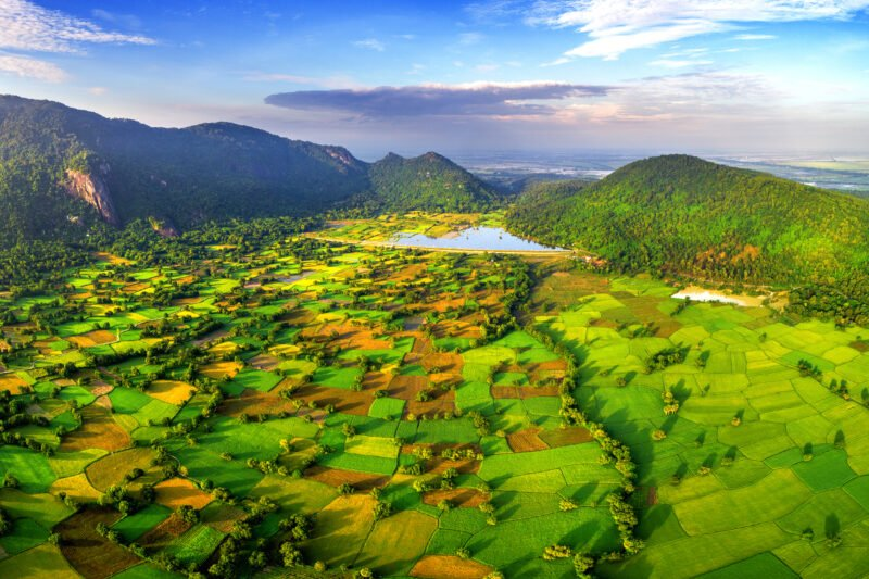 Best Of Ho Chi Minh City & Mekong Delta 5 Day Tour Package_3