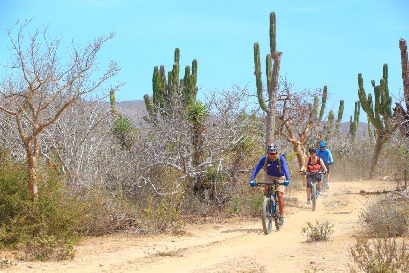 Baja Desert Mountain Bike Tour From Los Cabos_54 (2)