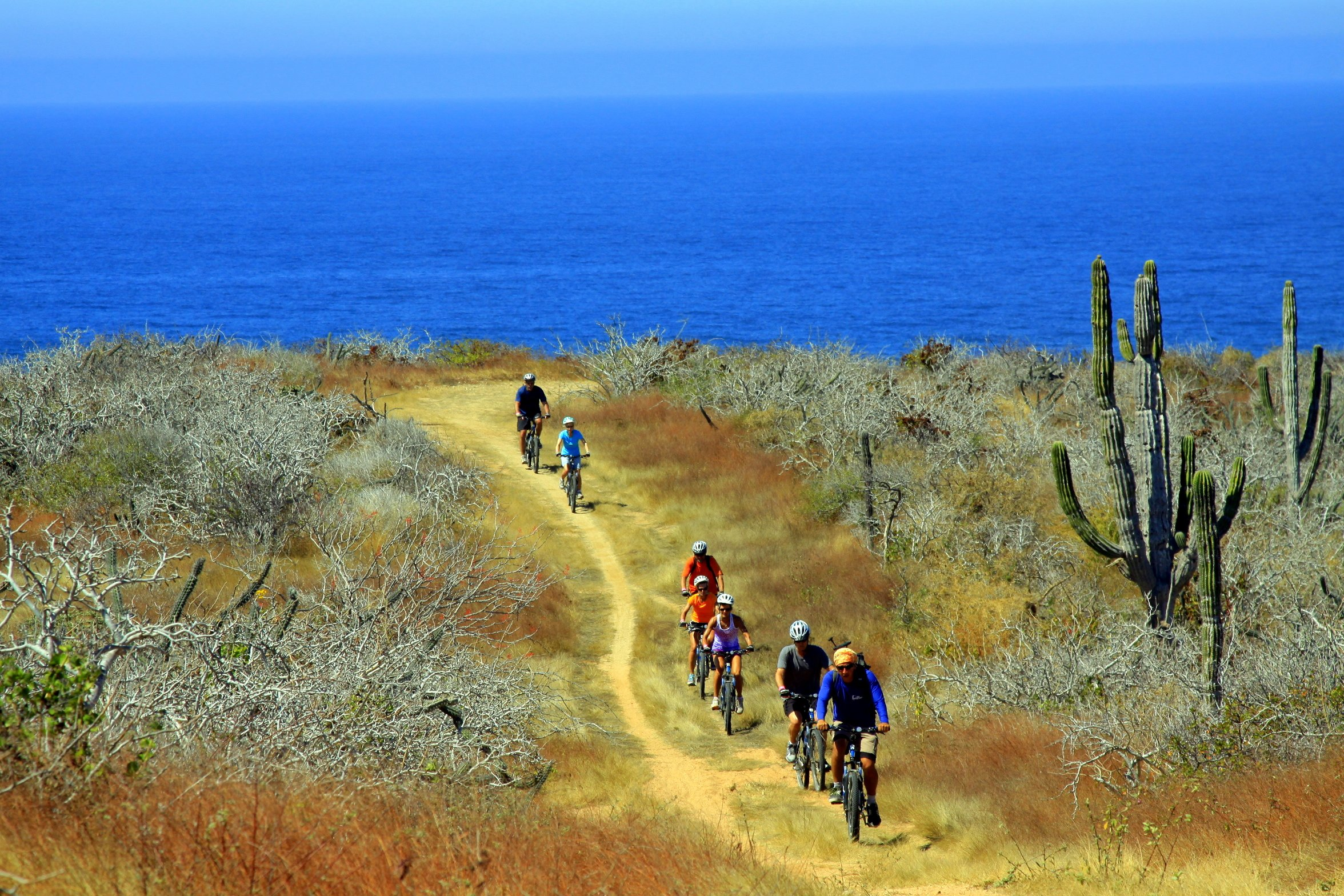 Baja Desert Mountain Bike Tour From Los Cabos_54 (5)