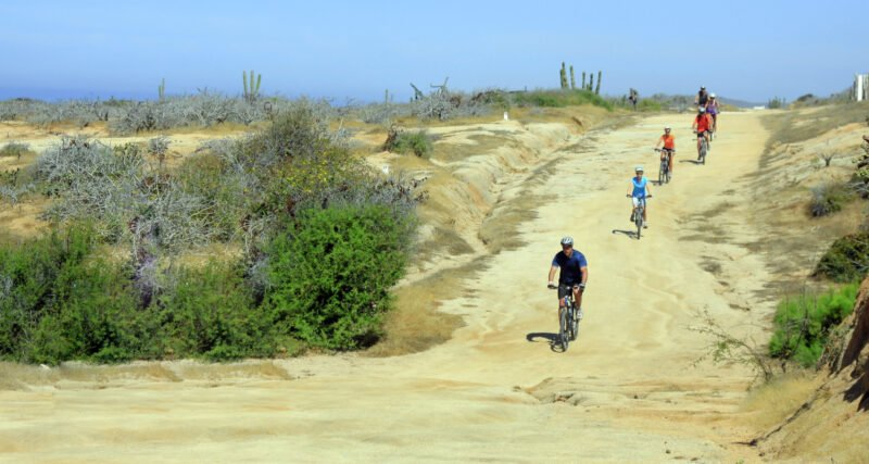 Baja Desert Mountain Bike Tour From Los Cabos_54 (6)