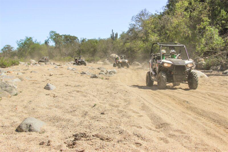 Canopy & Off-road Adventure Tour From Los Cabos_54 (2)